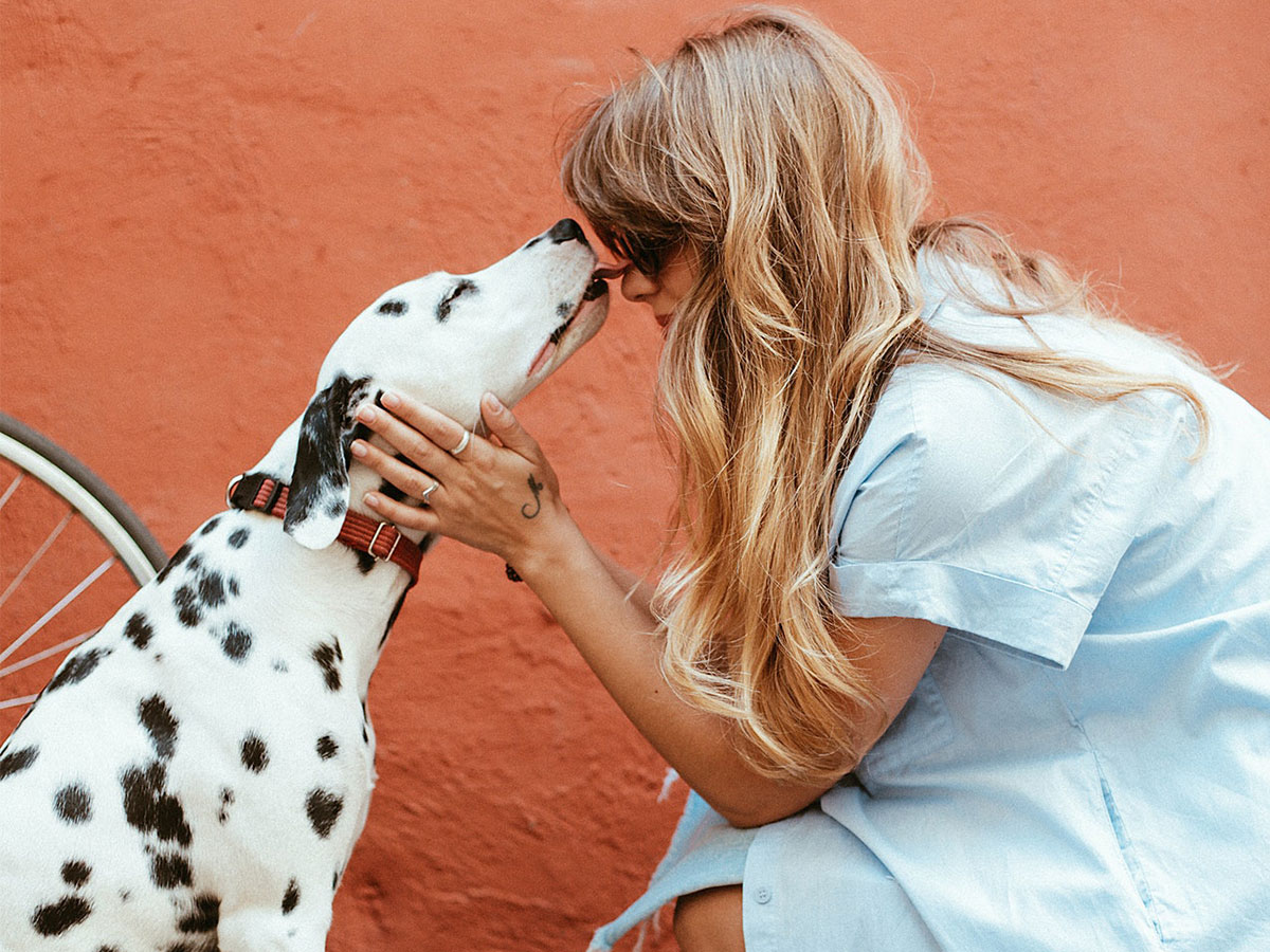 7 Things To Learn From Your Pets